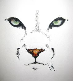 """Cougar"" Coloured Pencil Drawing"