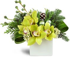 For only the most discerning tastes, this exquisite winter arrangement  sparkles with modern holiday romance Whether it's a gift for a very  special someone, unforgettable holiday party décor, or perhaps for the  winter bride, this gorgeous floral confection features stunning green  cymbidium orchids, eucalyptus pods, pine cones and waxflower arranged to  perfection in a white ceramic cube vase.Green cymbidium orchid blooms, waxflower, pine, eucalyptus pods, and  white-tipped pine cones are…