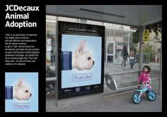 Outdoor advertising company JCDecaux and Y&R wants Israelis to adopt an animal. Street Marketing, Guerilla Marketing, Social Advertising, Creative Advertising, Let's Have Fun, Facebook Likes, Pet Adoption, Animal Adoption, French Bulldog