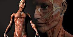 Oι ασθένειες που προκαλεί ο χαρακτήρας μας: http://biologikaorganikaproionta.com/health/225360/
