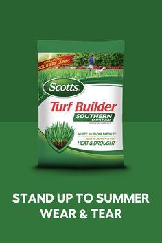 Turf Builder, Bermuda Grass, Cinder Block Garden, Backyard Trampoline, New Things To Try, Hydrangea Garden, Hybrid Tea Roses, Outdoor Planters, Lawn And Garden