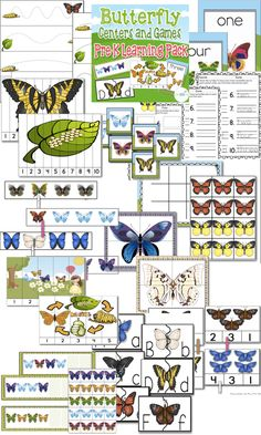 Butterfly Preschool/Pre-K Pack: Counting to 5, Counting to 10, Matching, Tracing, Patterns, Uppercase/Lowercase matching, and more! $