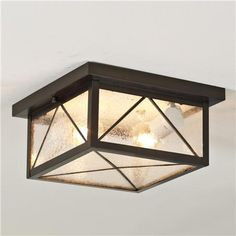 Still Waters Indoor/Outdoor Ceiling Light