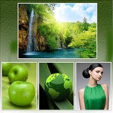 Afbeeldingsresultaat voor green colour in nature