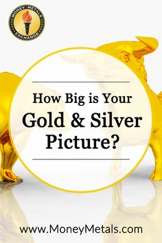 """Precious metals do not """"have"""" to reach a certain price point in order for your analysis to be correct, and for you to amass substantial profits. They just need to advance smartly over time, in line with what tends to take place as a robust bull market builds momentum and then much later, plays itself out."""