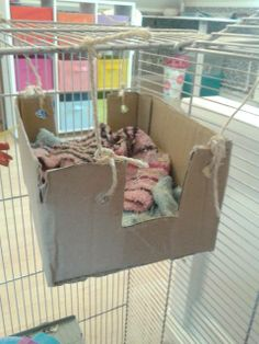 Rat bed Would be even better if it were a plastic bin...easier to clear and would last longer
