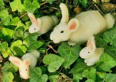 bunnies in the vines