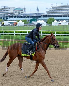 Caption: Far Right<br /> Horses on the track at Churchill Downs on Sun. April 26, 2015, in Louisville, Ky., in preparation for the Kentucky Derby and Kentucky Oaks.<br /> Works4_26_15 image274<br /> Photo by Anne M. Eberhardt