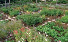 Homestead farm garden layout and design for your home 11 - garden landscaping Potager Garden, Herb Garden, Garden Beds, Garden Landscaping, Garden Edging, Landscaping Software, Farm Gardens, Outdoor Gardens, Veggie Gardens