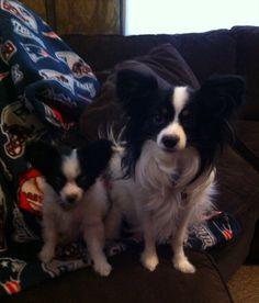 Jasper & Neeko