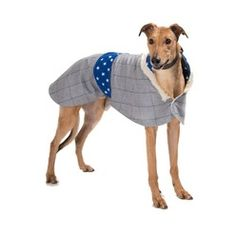 Darcy Sighthound Tweed Coat is part of a collection of dog coats and pet accessories from Minkeys Tweed, now available at PetsPyjamas.We're big fans of quality pet wear and Minkeys Tweed offered us all that and more with their fantastic range - we couldn't sign them up quick enough...Established in 2012, Minkeys Tweed are dedicated to crafting luxury dog coats and accessories - particularly for sight hound dog breeds, that offer comfort and practicality in equal measure. All designs are…