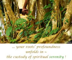 ... your roots' #profoundness unfolds in ~ the #custody of #spiritual #serenity !