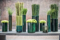 New autumn 2014 collection cylinders in beautiful green tones