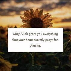 Gods Love Quotes, Muslim Love Quotes, Love In Islam, Allah Love, Beautiful Islamic Quotes, Religious Quotes, Hadith Quotes, Allah Quotes, Quran Quotes