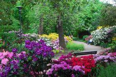 Botanic garden in Wroclaw, Poland