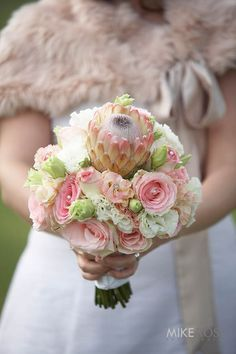 Pink and white Susara Protea Bouquet with pink Esperanza roses and pink and white lisianthus (flowering April in RSA) Protea Bouquet, Bouquets, October, Roses, Wedding Ideas, Beach, Flowers, Pink, Bouquet