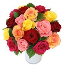 Two Dozen Mixed #Roses. Beautiful fresh #flowers available from http://www.flyingflowers.co.nz/mixed-roses-two-dozen