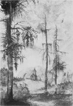 Landschaftsmalerei renaissance  Large Fir by Albrecht Altdorfer | Albrecht Altdorfer | Pinterest ...