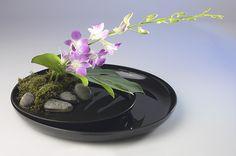 Ikebana, las joyas de la naturaleza, en la semana cultural ...