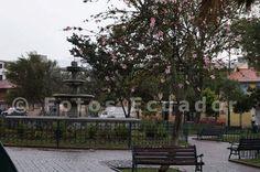 Parque de Tumbaco La foto que usted observa está en una resolución de 500 x32 pixeles. Si usted desea obtener las fotos originales en una resolución de 4900 x 3200 pixeles y sin la marca de agua puede escribir al mail: fotosecuador@vipserver.info