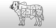 cortes-bovinos-edu
