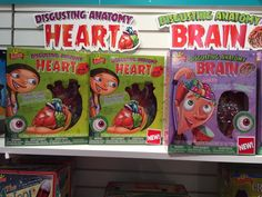 Pin for Later: See All 170+ Brand-New Toys Your Kids Will Be Begging For This Year Disgusting Anatomy Heart and Brain Disgusting Anatomy will expand its line to include gummy hearts and brains while teaching kids about how their bodies work.