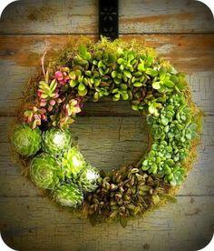 DIY succulent wreath: find instructions @ http://www.marthastewart.com/270811/succulent-wreath