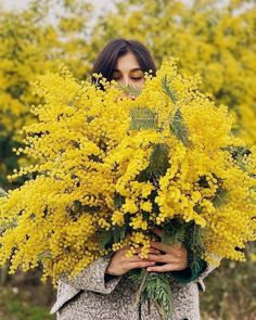 coffee and cigarettes Cut Flowers, Yellow Flowers, Top Photos, Blossom Garden, Cut Flower Garden, Mimosas, Mellow Yellow, Flower Power, Planting Flowers