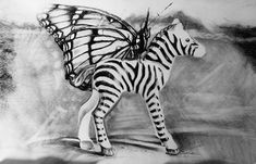 Pegasus- Monarch Butterfly Art Print by Susie Gordon. All prints are professionally printed, packaged, and shipped within 3 - 4 business days. Butterfly Art, Monarch Butterfly, Thing 1, Charcoal Drawing, Pegasus, All Art, Animal Print Rug, Fine Art America, Art Prints
