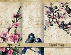 Spring digital paper  antique French script background vintage scrapbook Birds printable digital collage sheet 6 x 4  instant download card by DigitalMagpie on Etsy