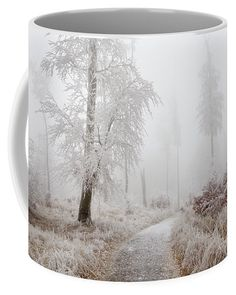 Winter Path Coffee Mug by Ren Kuljovska.  Small (11 oz.) Photo On Mug, Mugs For Sale, Photography Awards, Great Bands, Travel Photographer, Basic Colors, How To Be Outgoing, Color Show, Fine Art America
