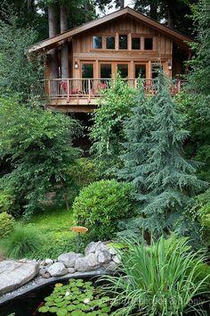Wonderful Tree House. You'll Love It! (12)