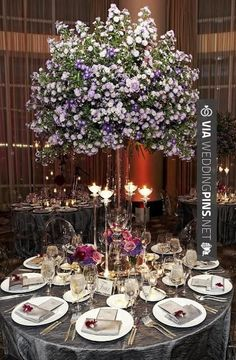 Fantastic! -                                                                                                                                                                        belloooooss.. | CHECK OUT THESE OTHER TO DIE FOR TEMPLATES FOR GREAT Centros de Mesa Para Boda HERE AT WEDDINGPINS.NET | #CentrosdeMesaParaBoda #CentrosdeMesa #boda #weddings #centerpieces #weddingcenterpiece #vows #tradition #nontraditional #events #forweddings #iloveweddings #romance #beaut