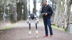 """This creepy robot walks like a chicken and could someday deliver your groceries Read more Technology News Here --> http://digitaltechnologynews.com  This could be the future of robotics  and it kind of looks like a chicken.    Agility Robotics unveiled a bipedal robot called Cassie this week. The company which spun out of the ATRIAS project at Oregon State University is focused on """"legged locomotion"""" and hopes to someday engineer robots that can walk just like people.   That should be…"""