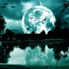 Moon w/ Birds!