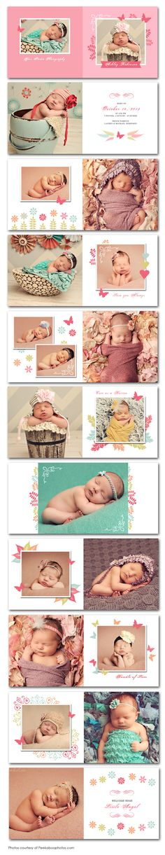 Butterfly Garden Newborn Photo Album Template