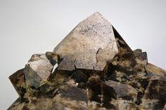 Bitumen Quartz,  Pinache near Pforzheim, Karlsruhe,  Baden-Württemberg, Germany. Size 2,5 cm. Collection: Ben van den Berg. Copyright: Reinhold