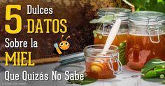 La miel no solo es un deleite dulce; tiene poderosos usos medicinales, así que asegúrese de elegir la miel sin procesar y sin filtrar. http://articulos.mercola.com/sitios/articulos/archivo/2015/01/04/beneficios-de-salud-de-la-miel.aspx