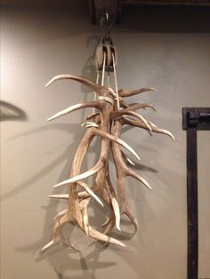Big Elk Shed Antlers Hanging from Anique Pulley in Trophy Room Man Cave room men awesome room men diy crafts room men inspiration room men interiors room men small spaces