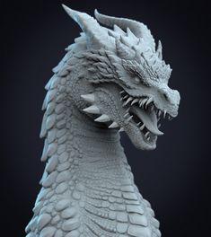 Creature Concept Art, Creature Design, Dragon Head Tattoo, Dragon Anatomy, Mythological Animals, Dragons, Dragon Artwork, Alphabet Art, Fantasy Dragon