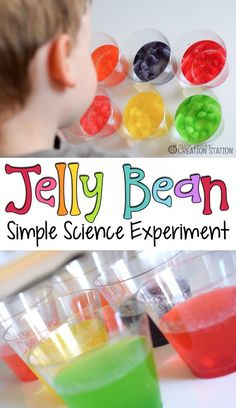 Jelly Bean Simple Science Experiment and FREE printable - MJCS We LOVE doing simple science experiments and investigations in our house! This jelly bean simple science experiment was no exception Science Week, 1st Grade Science, Preschool Science, Science Activities, About Science, Preschool Kindergarten, Science Classroom, Earth Science, Easter Activities For Preschool