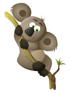 William has long trip behind him. He flew from far Australia. No wonder he is so tired and hungry, he sleeps all day long. Do you know which plant William likes to eat the most? Sleeping All Day, Tigger, Disney Characters, Fictional Characters, Plant, Australia, Animals, Animales, Animaux