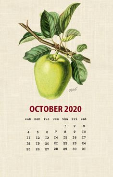 Botanical Fruit 2020 Calendar Printable Templates culinary Fruits Monthly Planner In botany Aggregate fruit Ovary Latest Designs 12 Months Yearly One Page October Calendar Printable, Free Printable Calendar Templates, Printable Calendar 2020, Cute Calendar, Vintage Calendar, December Calendar, Monthly Calendar Template, Holiday Calendar, Calendar Wallpaper