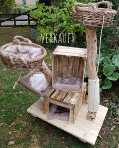 Kratzbaum other trees sold - natural wood trees for cats How to choose contemporary Rattan weather p Diy Cat Tree, Pocket Pet, Cat Playground, Cat Enclosure, Cat Room, Outdoor Cats, Pet Furniture, Wood Tree, Pet Life