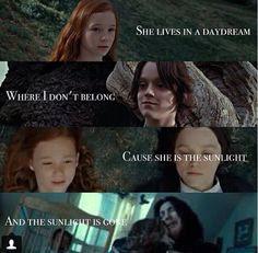 Harry Potter Severus Snape, Harry Potter Feels, Harry Potter Images, Harry Potter Quotes, Harry Potter Universal, Harry Potter Characters, Harry Potter World, Draco, Snape Quotes