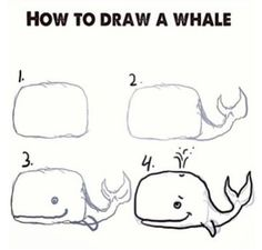 How to draw a whale!: