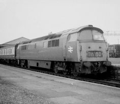 Class 52 D1072 Western Glory and Class 08 08955 at Newton …   Flickr