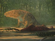 Douglas Henderson (1992) fauna:Euparkeria, Trematosuchus, Erythrosuchus flora: Dicroidium, Pterophyllum