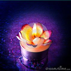 Close up of burning flower shaped candle on purple reflective surface.