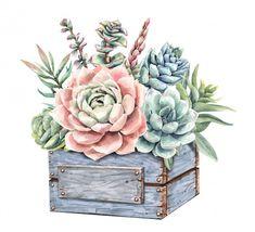 Watercolor Succulents, Watercolor Cactus, Succulents Painting, Watercolor Paint Set, Watercolor Paintings, Cactus Doodle, Plant Drawing, Decoupage Vintage, Wood Planters